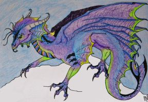 The Dragon for Alex by Khimera
