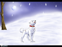 100 T.C 34 - Snow by Frodse