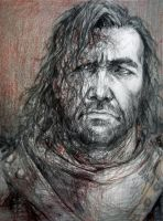 The Hound by DieWolfsseele