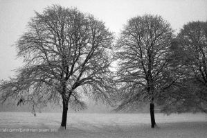 Winter is Here by EarthHart