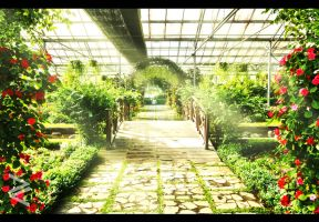 The Dutch Green House , Taman Bunga Nusantara by venario
