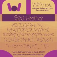 bird feather font by weknow by weknow