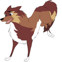 Dog OC: Fable by RaindropLily