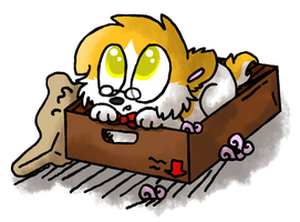 But... this is my box. by DoddleFur