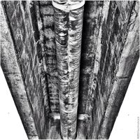 Pipe and Concrete BW by technohoot