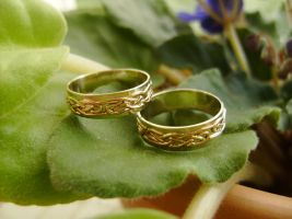 Wedding Bands Celtic Knot by GeshaR