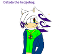 Dakota the hedgehog by Krystalthehedgewolf