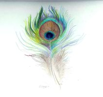 Peacock Feather by SheWhoSoars