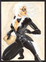 Black-Cat-9x12-web by JediDad