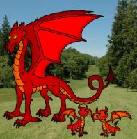 The Welsh Dragon by Moheart7