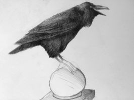 Three eyed raven- Pencil on paper. by 117design