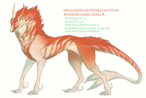 Halfcanter AUCTION by Nhyra