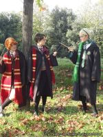 Genderbent Harry, Ron and Draco cosplay by Nko-ennekappao