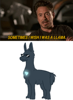 Sometimes I wish I was a llama by DuskofGold5