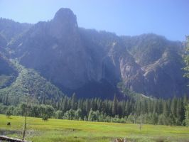 Yosemittee 1 by WillowTreeWitch