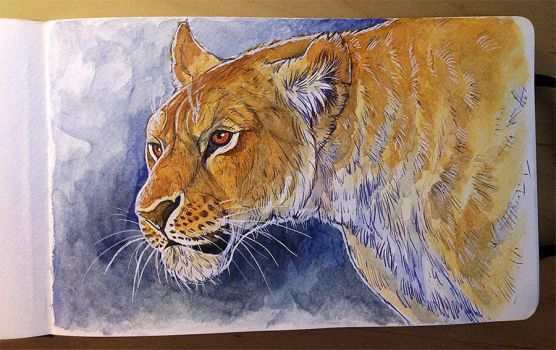 Watercolor painting - Lioness by NadiavanderDonk