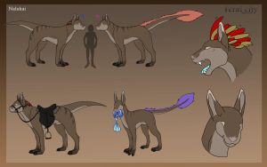 Feral city : Nalukai Species refrence by Ymia-the-cheetah