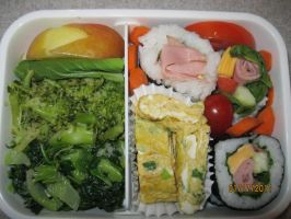 First Bento by kittyfan228