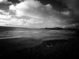 Oregon Coast by trickytreater
