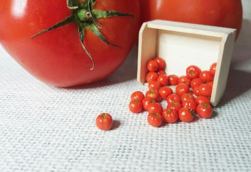 Miniature Tomatos by PetiteCreation