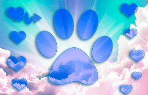 Dog Paws In The Sky by Maggiesdaisy