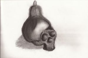 Charcoal Skull by OneOfLifesMysteries