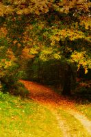 Herbst by Anschi71