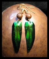Beetle Shell Earrings by LaughingScarab