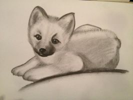 charcoal wolf by magicalyuki