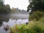 Misty River by GUDRUN355