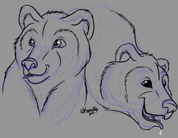 Quick bear study by Kuot