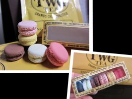 mini TWG box of 6 macarons by tehKOTAK