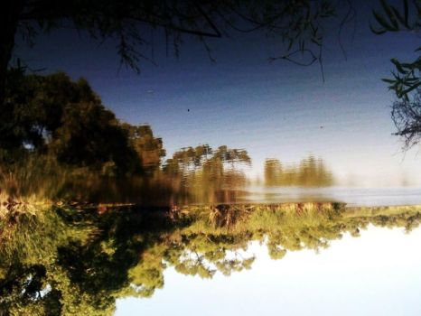 The Reflection Dimention by transcevocare