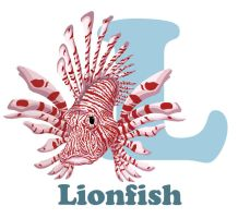 L-ionfish by RSImpey