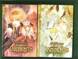 Return to the Labyrinth by HPGirl28