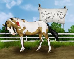Dollar, the Queen Tobiano by s1088