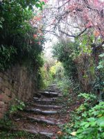 stairs10 by LeilasStock
