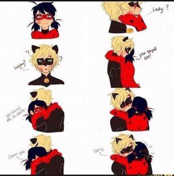 Ladybug and Chat noir by sandykalim