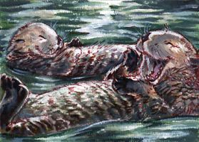 Otter yawn by thornwolf