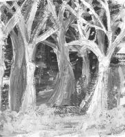 The White Forest by GrapefruitTea