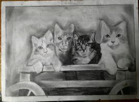 cat drawing by adamyayad