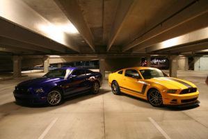 2013 gt and boss 302 by Oyxx