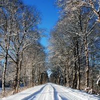 white alley by augenweide