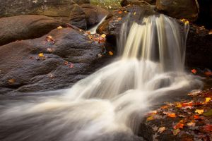 Chatfield Hollow in Fall by froggynaan