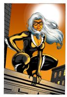 LEI's BLACK CAT by DeadDog2007
