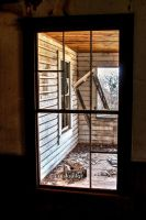 Inside looking out by kayaksailor