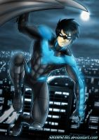 Nightwing! by shamserg