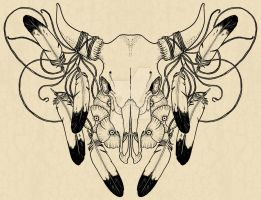 Fancy Skull by verreaux