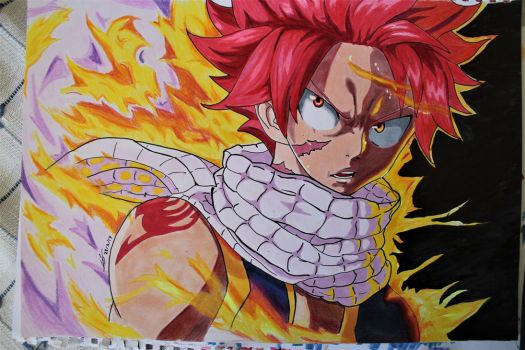 Natsu Dragneel by Robby-The-NINJA-Seal