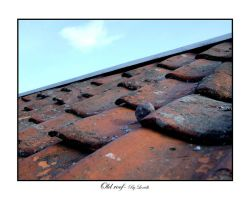 Old roof by lexidh